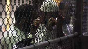 Länder gegen Aufnahme von Häftlingen