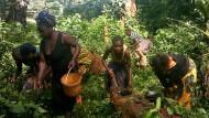 """Baka-Frauen auf der Suche nach Pilzen, Pflanzen und Kleintieren. Das Bild stammt aus einem """"PhotoVoice""""-Projekt, bei dem die Einheimischen ihren Alltag fotografieren."""