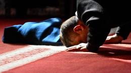Weshalb der Islam mit dem Grundgesetz kompatibel ist