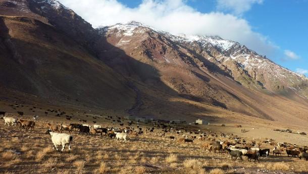 China und Indien ringen um Afghanistans Bodenschätze