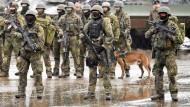 Deutschland bietet verstärktes Engagement in Mali an