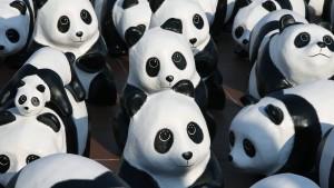 WWF hält heiklen Bericht zurück