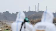 Das Atomkraftwerk Fukushima Daiichi ragt über den Wald von Namie hinaus