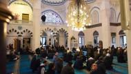 Die Muslime müssen selbst Lösungen finden