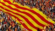 Treten für die Einheit Spaniens ein – Demonstranten am Sonntag in Barcelona