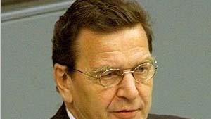 Schröder will Tests an Embryonen zulassen
