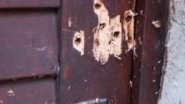 """Mann soll """"Manifest"""" des Halle-Attentäters verbreitet haben"""