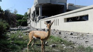 Nato bombardiert Kommandozentrale in Tripolis