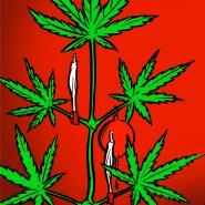 Schöne Bescherung: In Deutschland erfüllen 600.000 Konsumenten die Kriterien für Cannabis-Abhängigkeit oder -Missbrauch.