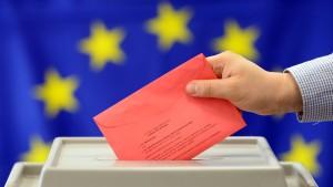 EU-Abgeordnete fürchten Schwächung der Demokratie