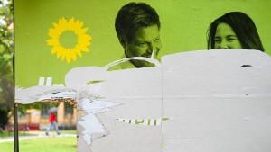 Plakate von AfD und Grüne am häufigsten zerstört