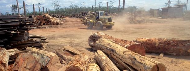 Sägewerk im Amazonas-Regenwald