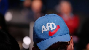 """Verfassungsschutz darf AfD nicht als """"Prüffall"""" bezeichnen"""