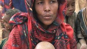 Hilfsorganisationen: Angriffe unterbrechen