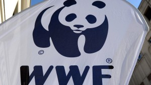 Erstaunliche Passagen im WWF-Report