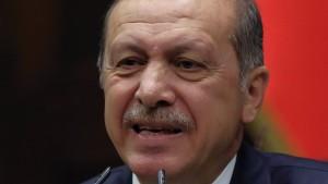 Erdogan bestätigt Telefonate