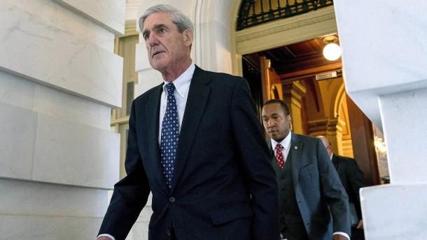 Muellers Mosaiksteinchen