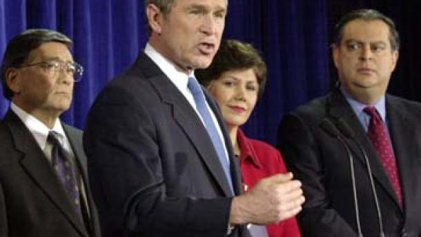 Das Bush-Team