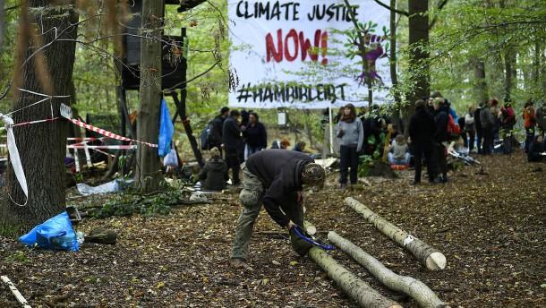 RWE räumt Barrikaden im Hambacher Forst