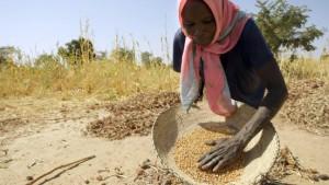 G-8-Staaten planen Getreidenothilfe