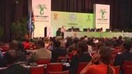 Kurz vor dem Ende des Klimagipfels kämpft die südafrikanische Regierung als Gastgeber gegen ein Scheitern der Verhandlungen.