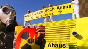 Roth: Grüne sollen friedlich demonstrieren