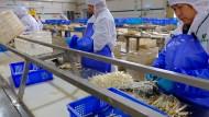 """In der Spargelfabrik """"Heze Sanqing Food"""" in Caoxian schälen Mitarbeiter Spargel."""