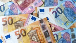 Grüne erhalten Rekordspende von einer Million Euro
