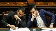 Müssen sich auf Reformen einigen: Luigi Di Maio und Matteo Salvini im Februar in Rom