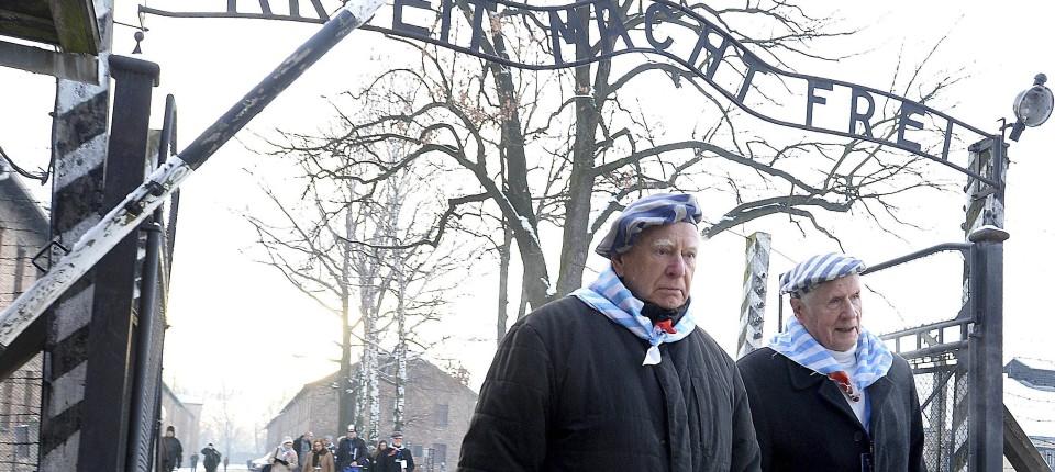 Bundesregierung Begeht Holocaust Gedenktag