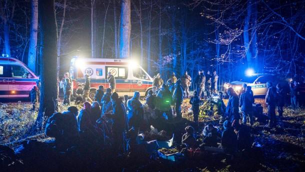 Eine Nacht im polnischen Wald