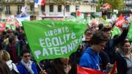 Demonstranten am Sonntag in Paris