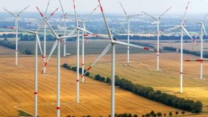 Neue Klima-Allianzen