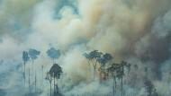 Das Motiv bleibt dasselbe, die Lage der brennenden und bedrohten Teile des Regenwaldes verbessert sich kaum. Welche Handlungsoptionen hat der UN-Sicherheitsrat in so einer Situation?