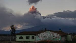 rosa vulkan neuseeland
