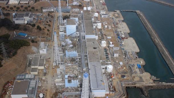 Starke Cäsium-Belastung im Hafen von Fukushima