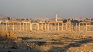 Dutzende Tote bei Kämpfen um Palmyra