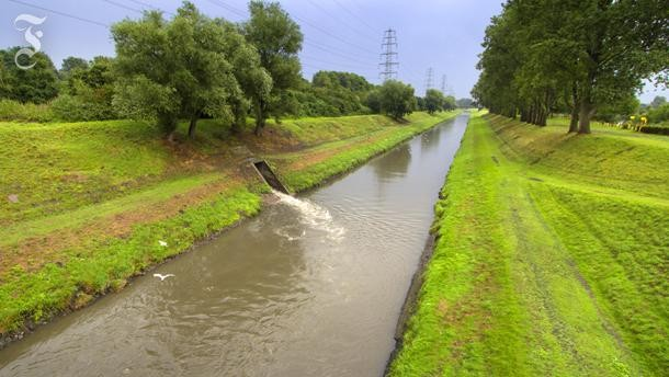 In der Mitte entsteht ein Fluss