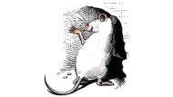 Ein Überlebenskünstler: Ratte im Schlupfloch.