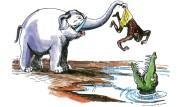 So erbarmungslos geht es zum Glück nur im Tierreich zu.