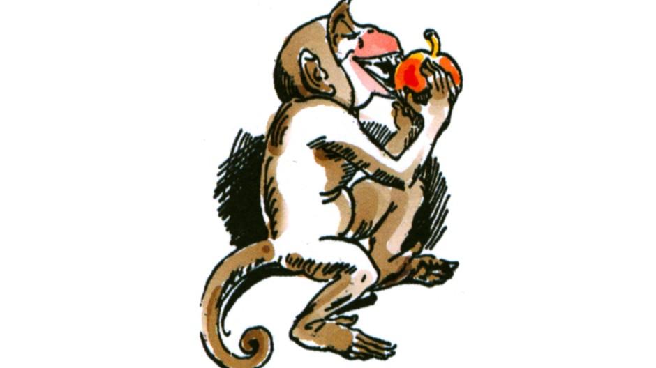 Wie vom wilden Affen gebissen: Symptome auch im tiefen Westen
