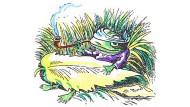 Will in seinem Sumpf bleiben: Von der ständigen Befragung erschöpfter Frosch.