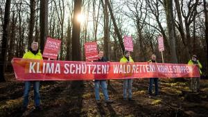 Polizei rückt in Hambacher Forst vor