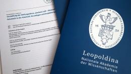 Ist das Merkels Lösung in der Diesel-Debatte?