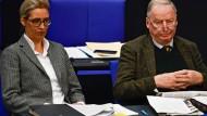 Die negativen Schlagzeilen rund um die AfD häufen sich: Keine leichte Zeit für die Parteivorsitzenden Alice Weidel (links) und Alexander Gauland.