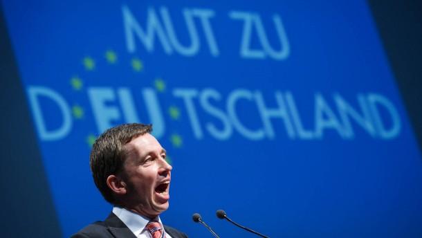 Lucke und Henkel führen die AfD in die Europawahl