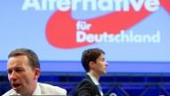 Scheitern oder Chance für die AfD: Bernd Lucke und Frauke Petry am Sonntag in Essen