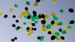 Grün-gelbe Gekränktheiten