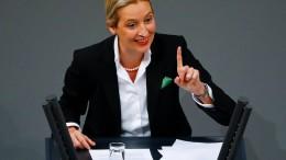 """Weidel wirft Merkel """"Politik der Spaltung"""" vor"""