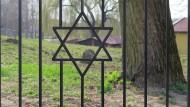 Blick auf den jüdischen Friedhof im ostpolnischen Frampol am 6. April 2016